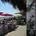 Бар-ресторант в Свети Влас | La Cubanita En El Mar